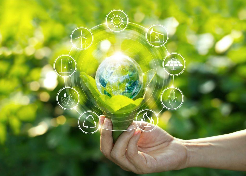 ecosysteme-speculateur trader